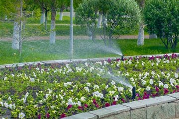 Bardin Outdoors Landscape Services
